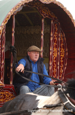 A Gypsy drives his Vanner at Appleby Fair