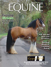 Sundance lands the cover of Equine Journal Regional Edition