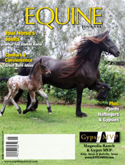 Lonestar and Dam Ulleke land the cover of Equine Journal Regional Edition